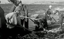 На малом море.1941 год - война