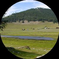 place_uzuri