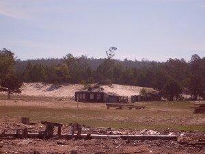 Песчанка 2011 год